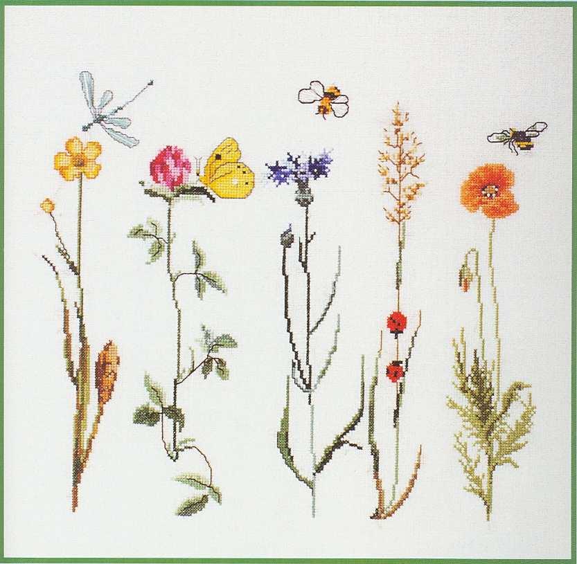 Вышивка полевых цветов